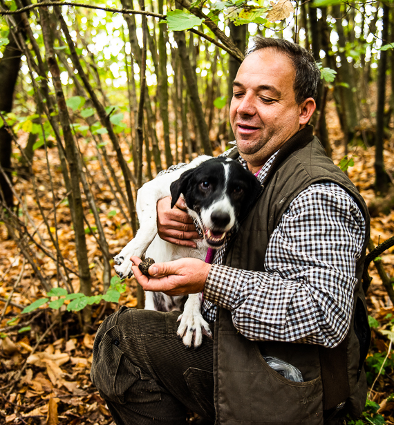 Truffle hunting in Langhe - A fun experiences to do during you vacation